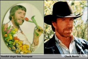 swedish-singer-owe-thornqvist-like-chuck-norris